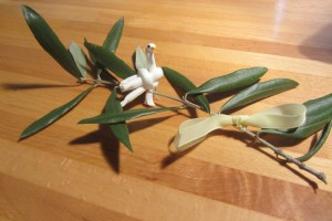 easter twig olive tree