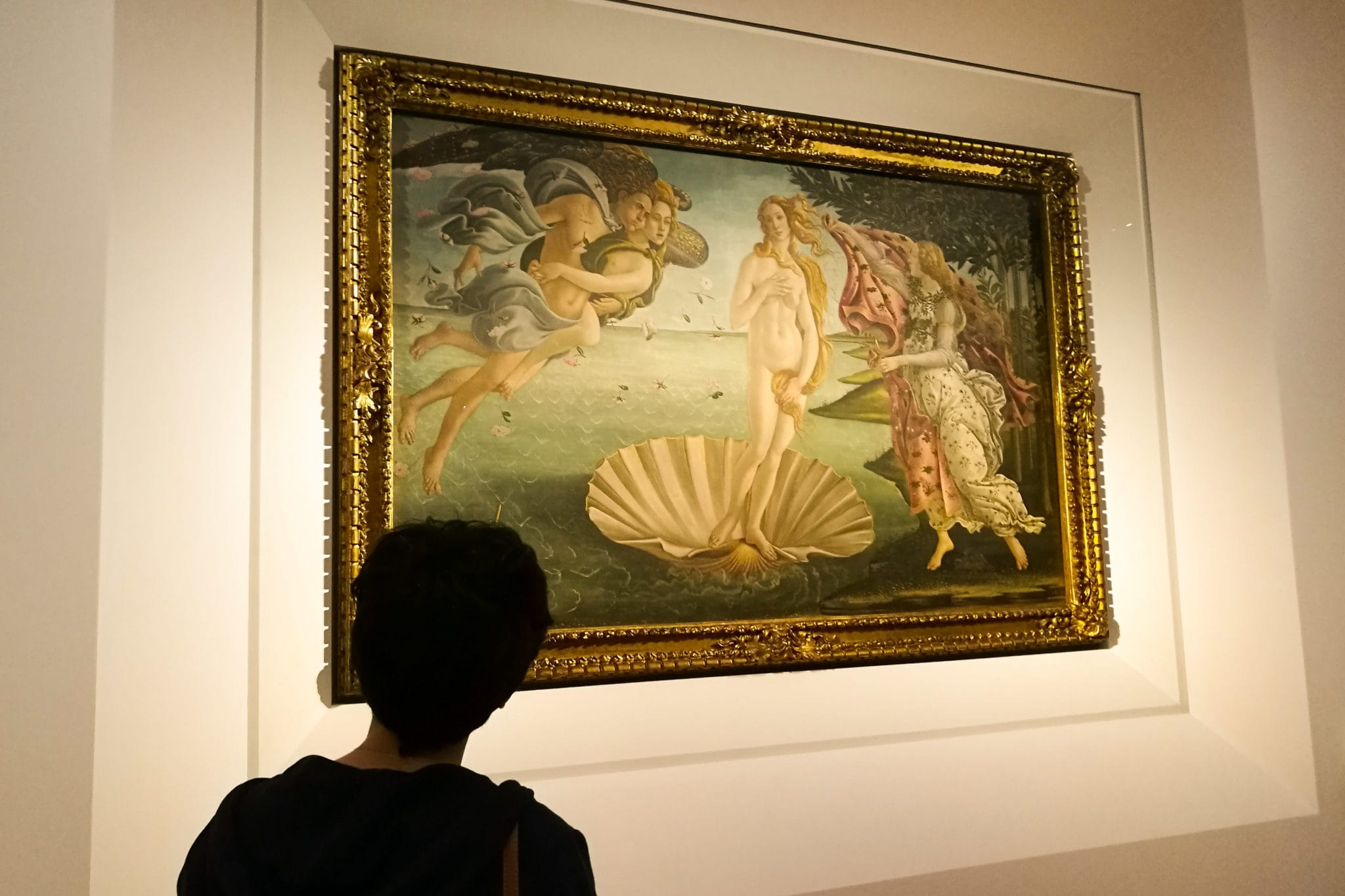 Woman staring at the Venus by Botticelli