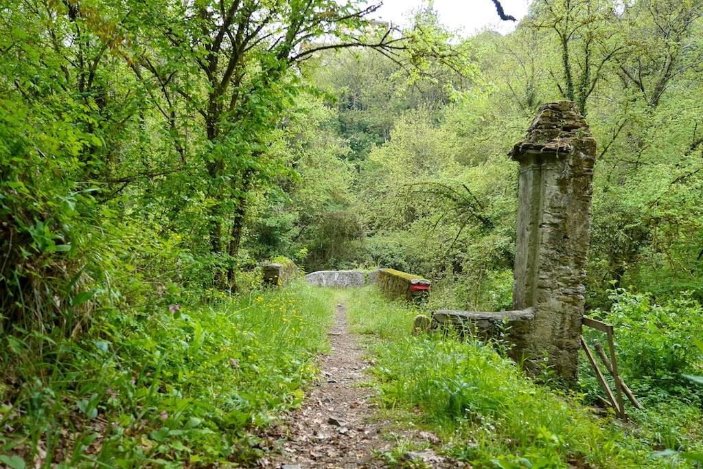 A path of the Via Francigena