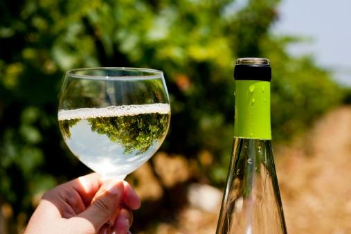 vermentino wine