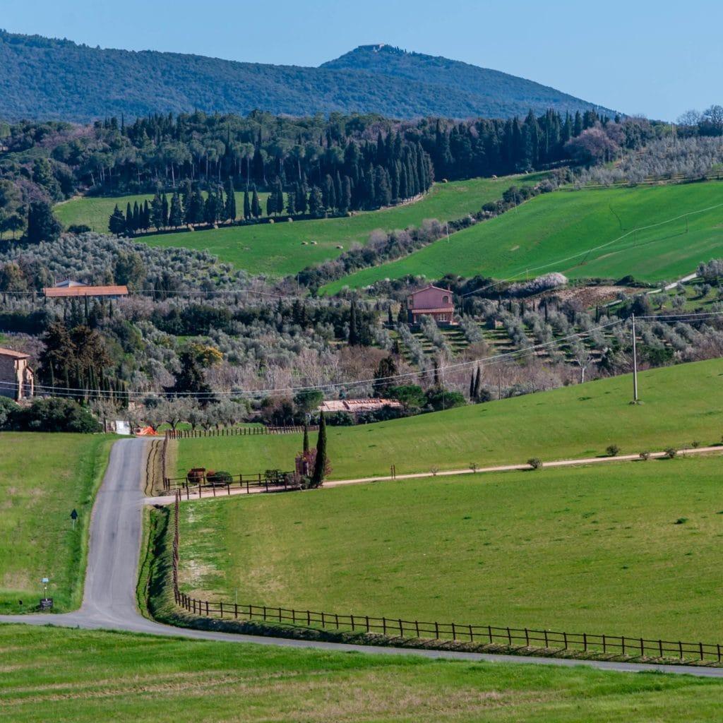 Bibbona hill road Tuscany