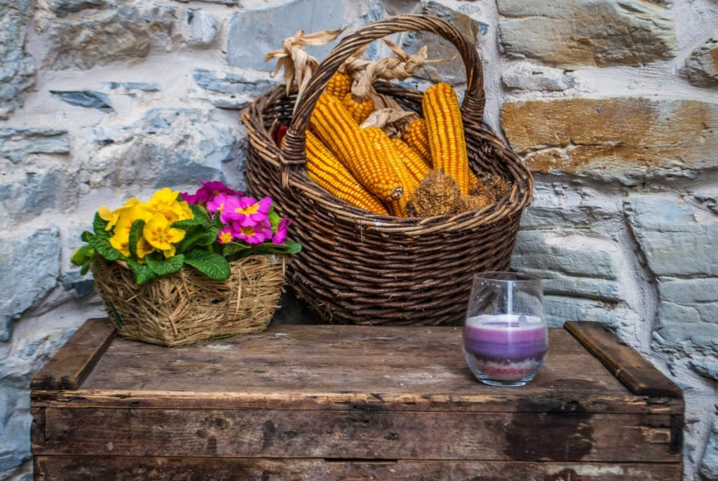 Flowers and corn tuscany lunigiana