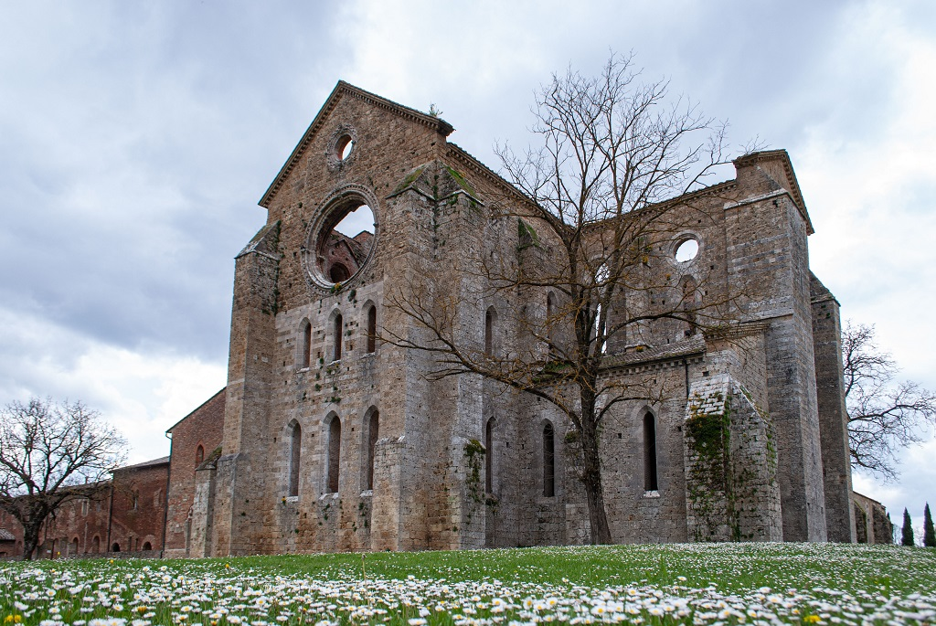 The abbey of San Galgano from outside, a green field with flowers