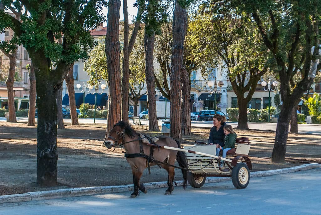 Mother and son on a buggy in Forte dei Marmi