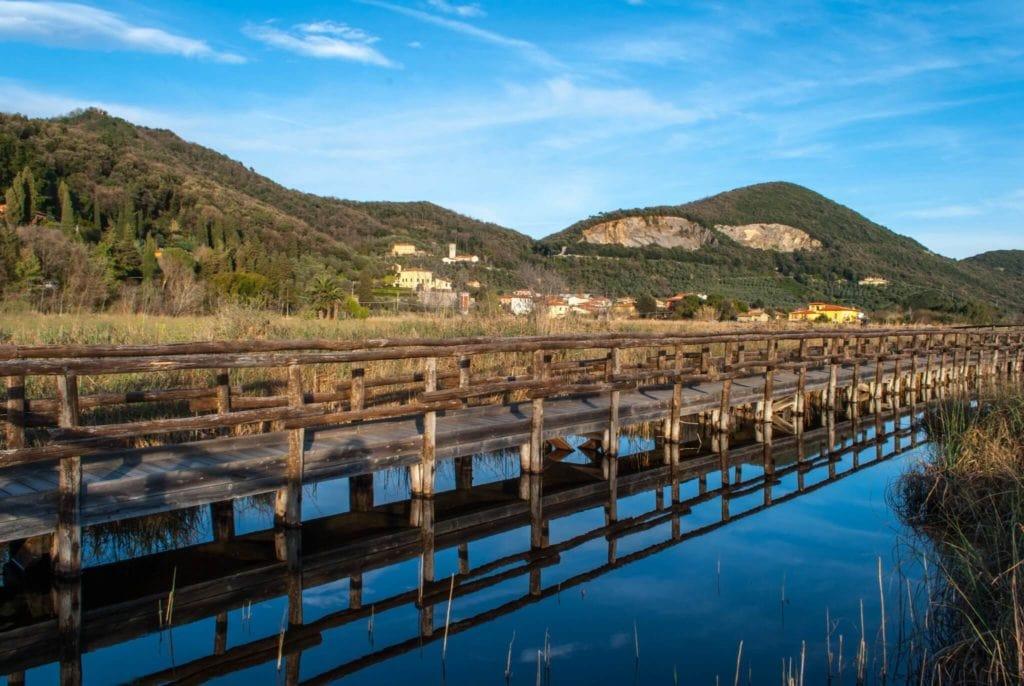 Massaciuccoli Lake Versilia Tuscany