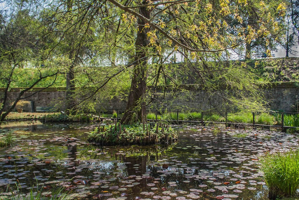 Botanic Garden Lucca