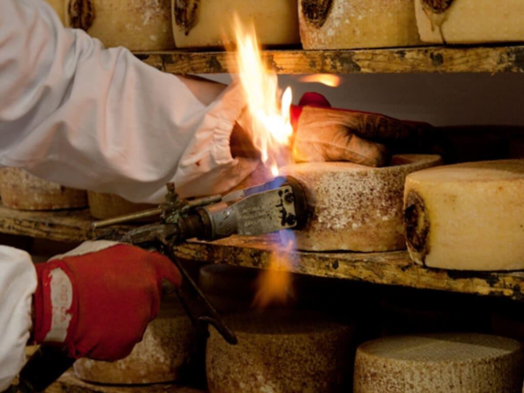 Pecorino Toscano Cheese preparation