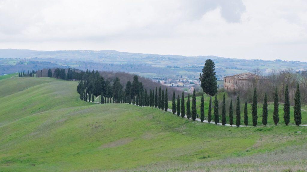 Certaldo Parco Collinare Canonica