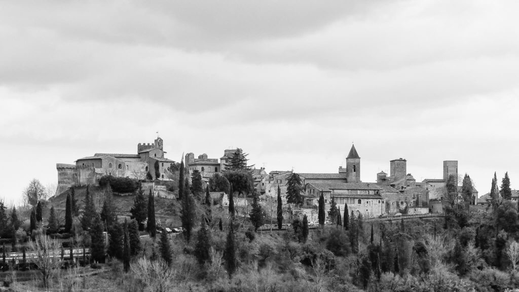 View of Certaldo Black and White