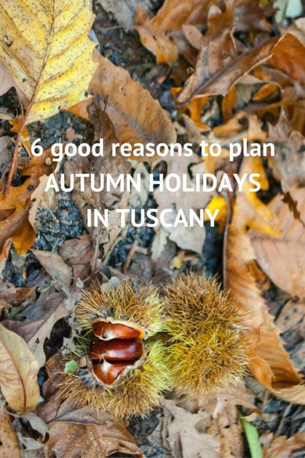autumn holidays in Tuscany pinterest