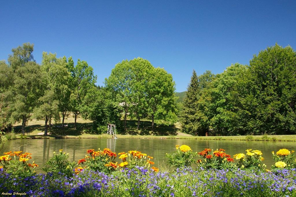Fields in blossom at Orecchiella Park in Tuscany